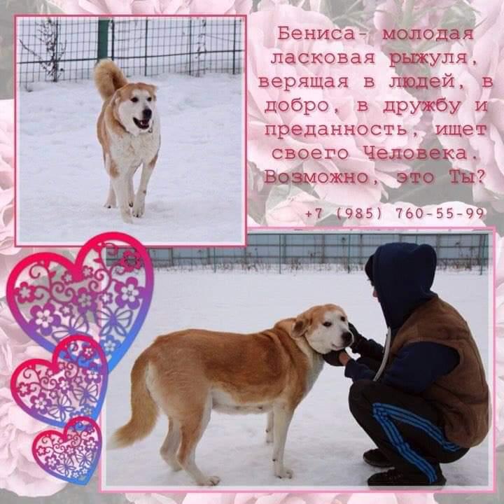 FB_IMG_1574365770512.jpg